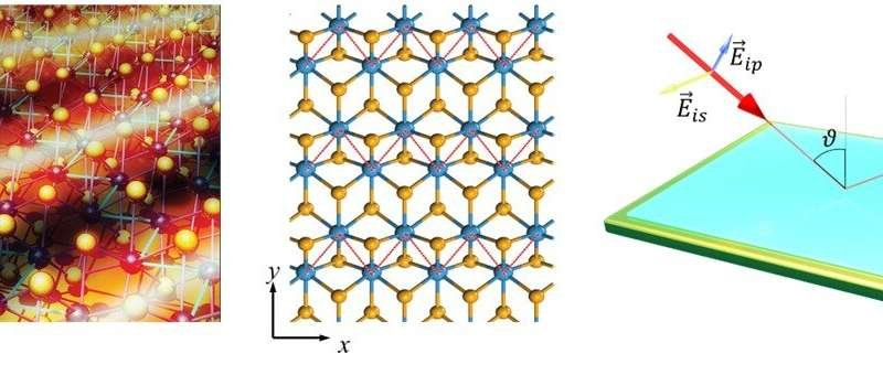 Figure shows (left) a visual representation of the mid-infrared anisotropic plasmon in quasi-metallic phase 2D-TMDs. (Middle) Quasi-metallic phase monolayer- tungsten diselenide (WSe2) with its directional zig-zag tungsten (W, blue dots) structure traced by red dashed-lines. (Right) Schematic of high-resolution spectroscopic ellipsometry used to probe the plasmon of thin-film systems. This is a non-invasive optical technique based on the change in the polarisation state of light as it is reflected obliquely from a thin film sample. Credit: Advanced Science