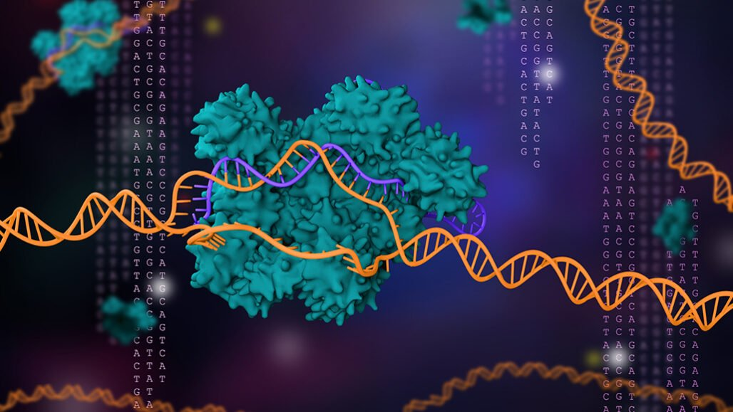 Researchers Emmanuelle Charpentier and Jennifer Doudna devised a powerful gene-editing tool called CRISPR/Cas9 (illustrated). The gene editor has revolutionized molecular genetics and gene therapy and netted the duo the 2020 Nobel Prize in chemistry.  MELETIOS VERRAS/ISTOCK/GETTY IMAGES PLUS