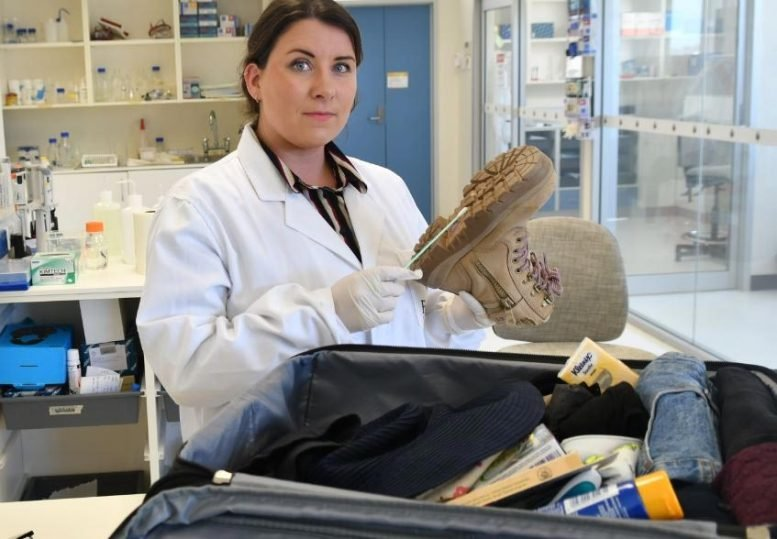 Flinders University forensic DNA technology research associate Dr. Jennifer Young. Credit: Flinders University